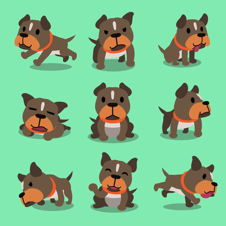 pit bull: Cartoon character pit bull terrier dog poses
