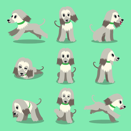 hound: Cartoon character afghan hound dog poses set