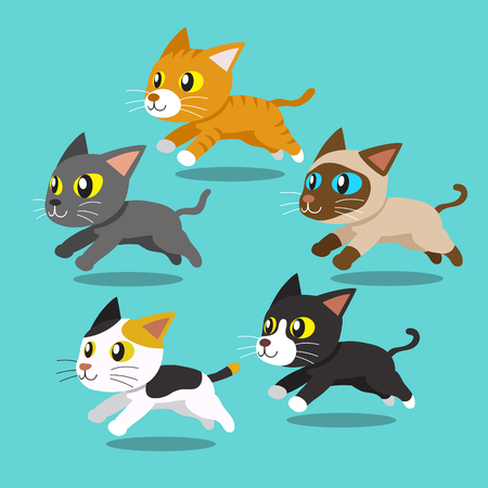 bombay: Cartoon cats running