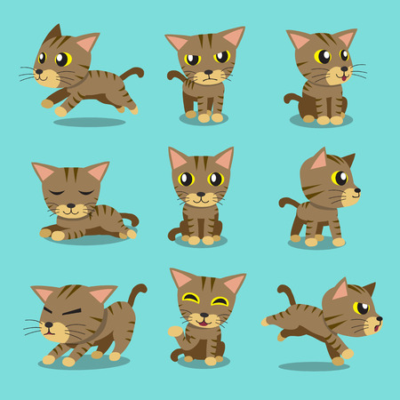 happy cat: Cartoon character brown tabby cat poses Illustration