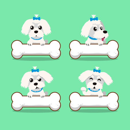 maltese dog: Cartoon character maltese dog with big bones