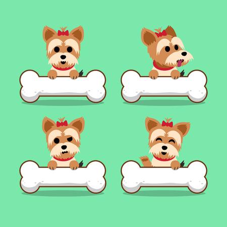 yorkshire terrier: Set of cartoon character yorkshire terrier dog with big bones