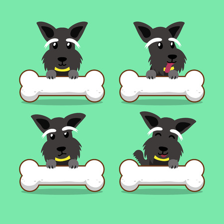 Cartoon character scottish terrier dog with big bones Illustration