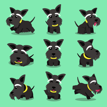 scottish terrier: Cartoon character scottish terrier dog poses Illustration