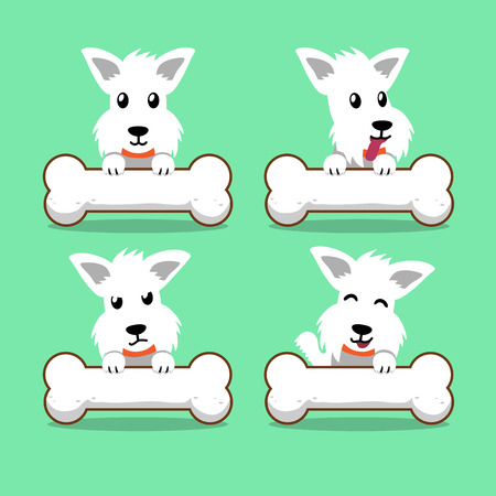 scottish terrier: Cartoon character white scottish terrier dog with big bones Illustration