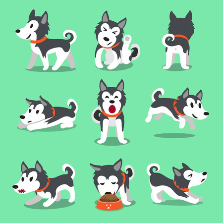 Cartoon character Siberian husky dog poses Ilustrace