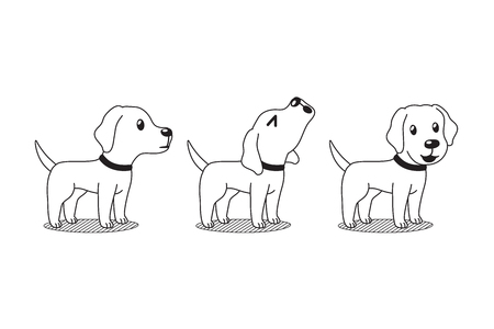 Vector cartoon character cute labrador dog poses