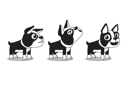 Vector cartoon character cute boston terrier dog poses
