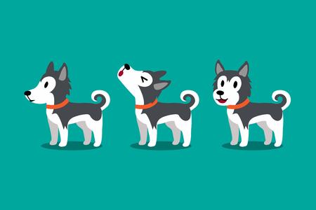 Conjunto de poses de perro lindo husky siberiano de personaje de dibujos animados de vector