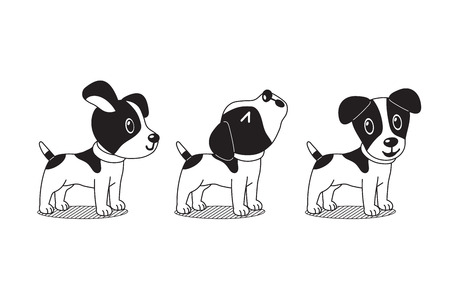 Vector cartoon character cute jack russell terrier dog poses Illustration