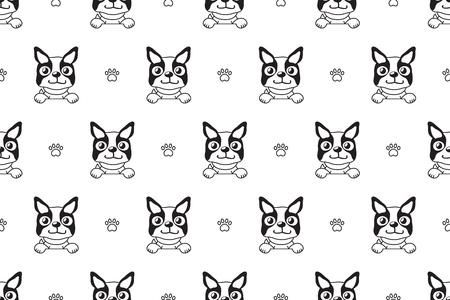Vector cartoon character boston terrier dog seamless pattern for design. Illustration