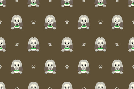 Cartoon character afghan hound dog seamless pattern background for design. Standard-Bild - 116892796