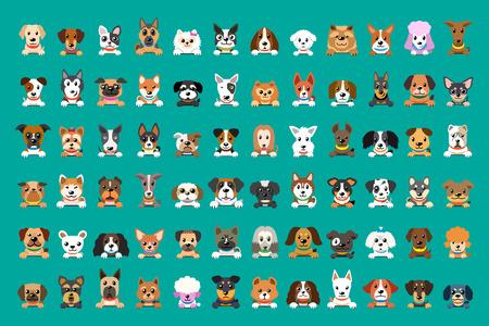 Different type of vector cartoon dog faces for design. Standard-Bild - 117376738
