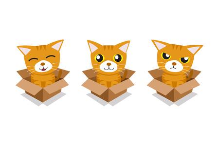 Vector cartoon illustration set of tabby cat in cardboard box for design. Standard-Bild - 118015260