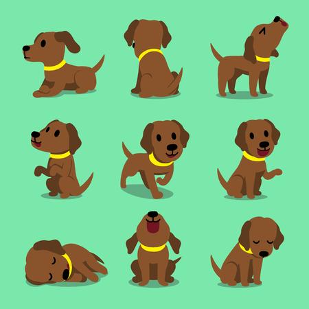 Vector cartoon character brown labrador dog poses for design. Standard-Bild - 118015264