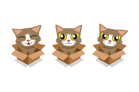 Vector cartoon illustration set of cute cat in cardboard box for design. Standard-Bild - 118519169