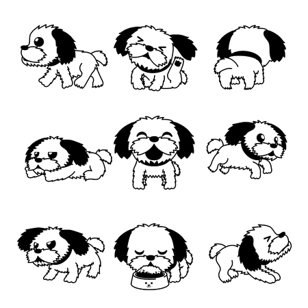 Cartoon character cute shih tzu dog poses for design. Vector Illustration