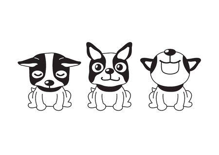 Vector cartoon character boston terrier dog poses for design.