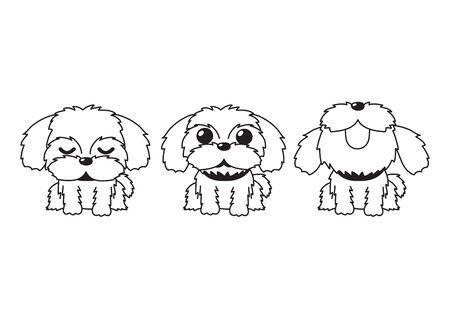 Vector cartoon character shih tzu dog poses for design. Vector Illustration