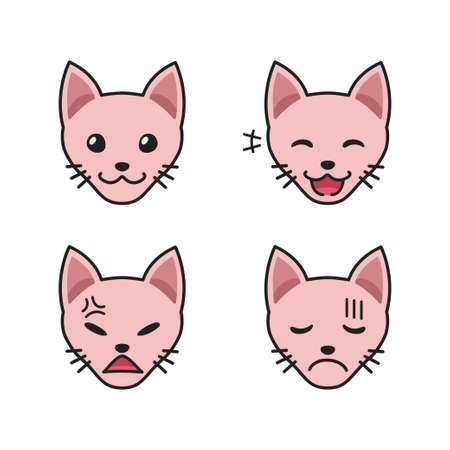 Set of sphynx cat faces showing different emotions for design.