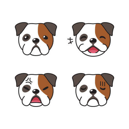 Set of character bulldog faces showing different emotions for design.