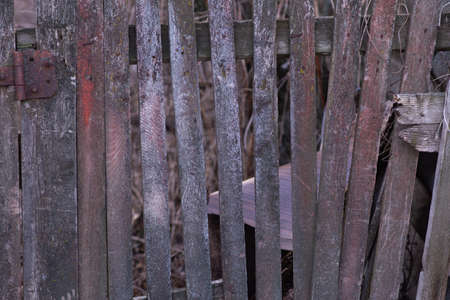 An old wooden fence, leaning from time to time,