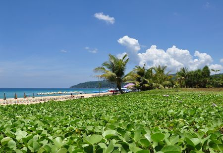 Kata beach,Karon beach,Naihan beacn Phuket Thailand photo
