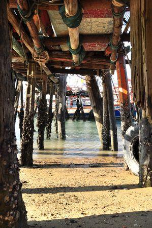 extensive marine: Nai Yang beach Phuket Thailand 16-04-2010