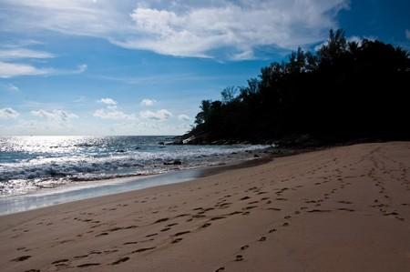 Beach@Phuket Thailand 2010 photo