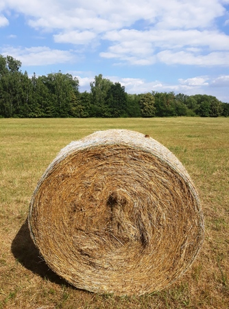 Circle of Hay on a Green Meadow Stock Photo