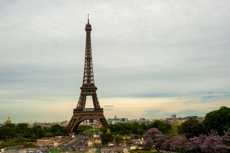 The Eiffel tower Paris Stock Photo - 14151728