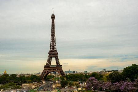 The Eiffel tower Paris Stock Photo - 14151728