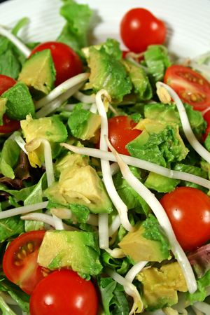Fresh avocado and bean sprout salad ready to serve.