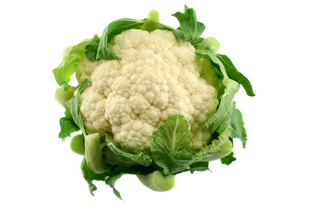 unprocessed: Freshly picked cauliflower dtraight from the vegetable garden.