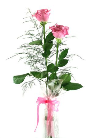 endearment: Beautiful gift arrangement of two pink roses with foliage. Stock Photo