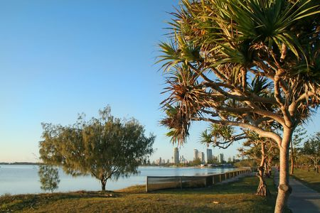 Township of Southport on the Gold Coast Australia seen through pandanus trees from Labrador after sunrise. Stock Photo - 2837257