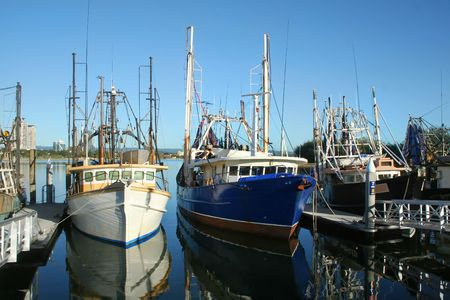 Prawn trawlers and fishing boats at dock in the early morning sun. Stock Photo - 3498360