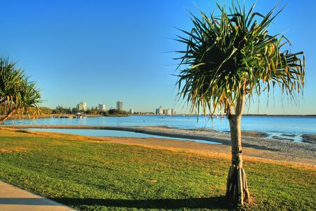 View looking to Labrador on the Gold Coast Australia with pandanus tree. Stock Photo - 5184132