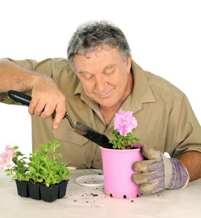 Nurseryman plants a new seedling with loving care. Stock Photo - 5626876