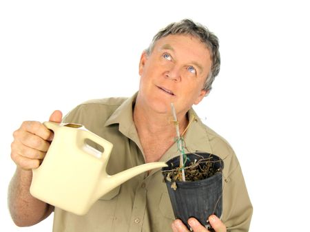 nurseryman: Nurseryman looks to the heavens for water for his dried out plants. Stock Photo