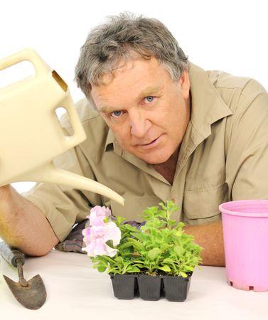 Nurseryman watering seedlings with a watering can. Stock Photo - 6848186