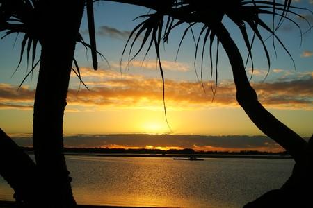Beautiful sunrise over water against bent pandanus trees. Stock Photo - 7095157