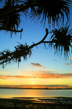 Beautiful sunrise over water against bent pandanus trees. Stock Photo - 7326579