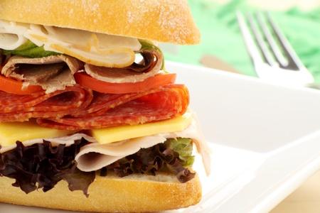 queso cheddar: Rollo de carne Mega de jam�n, salami, rosbif y Turqu�a con ensalada y queso cheddar.