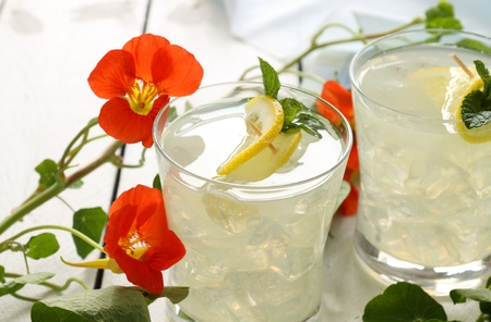 quench: Delicious lemon drink with sliced fresh lemon and mint.
