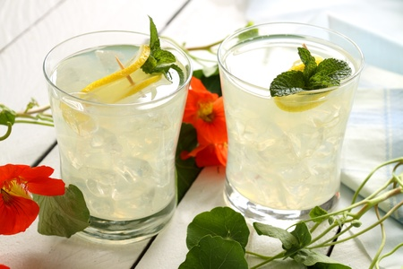 quench: Delicious iced lemon drinks with sliced fresh lemon and mint.