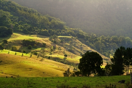 grassy knoll: Sun bathed rolling hills at the base of mountains at sunset. Stock Photo