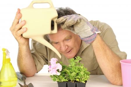 Dedicated gardener watering his beloved seedlings with a watering can. photo