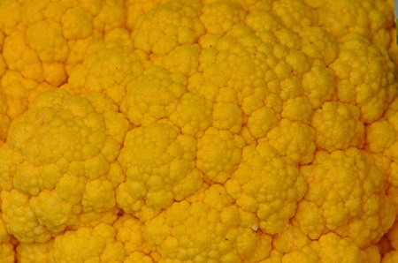 multiple personality: Close up view of yellow brocoli showing the details of the texture