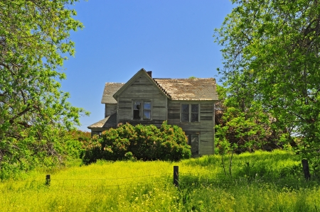 run down: An abandoned house with over grown brush and grass around it  Stock Photo